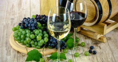 Podzimní slavnosti vína aneb kam vyrazit za vínem než přijede na bílém koni Svatý Martin