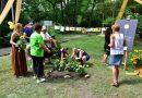 Květy slunečnic rozsvítily Česko, koronaviru navzdory. Akce upozornila na roztroušenou sklerózu