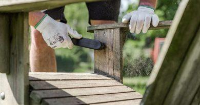 Co jste nevěděli o dřevě a jak s vadami dřeva naložit?