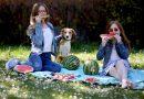 Oživte piknik nebo zahradní slavnost snadnými recepty z bezpeckových melounů