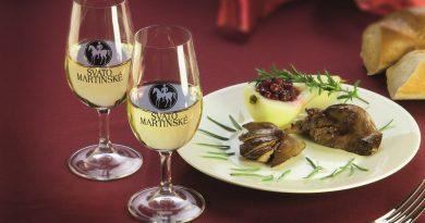 Svatomartinské 2020 aneb nejlepší mladá vína přichází na trh!