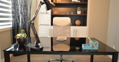 Home office lidem vyhovuje, pochvalují si pohodlí i úsporu času. Proč je lepší mít domácí kancelář?