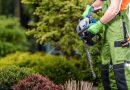 Vdobě pandemie lidé více investují do svých zahrad. Jak se starat o aku nářadí či grily?