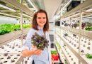 Kvalitní čerstvé mikrobylinky a zelenina zunikátního GreeenBoxu v Manifestu Anděl vPraze jsou dostupné po celý rok